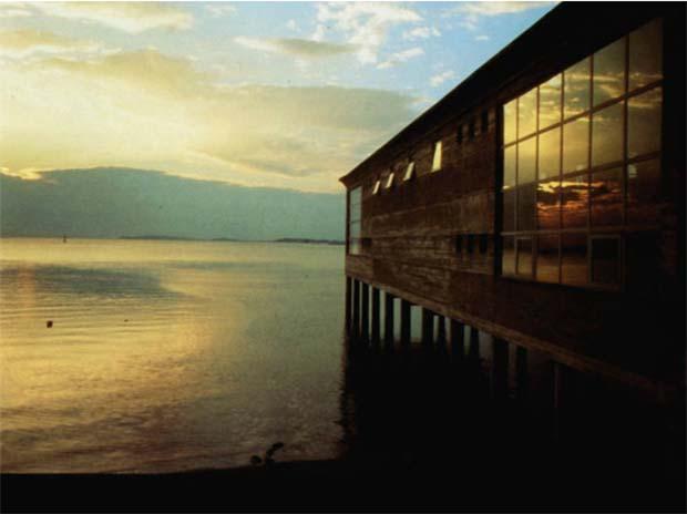 acuario vilagarcia | cesar portela | carril compostela