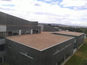AG | Hospital Lugo