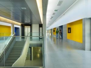 CEIP Amadeo | Ourense | HIVAS